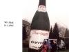 1993-naamswisseling-_resize